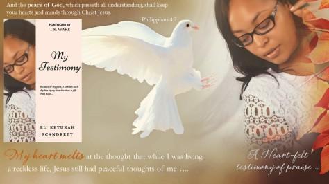 Testimony New Flyer